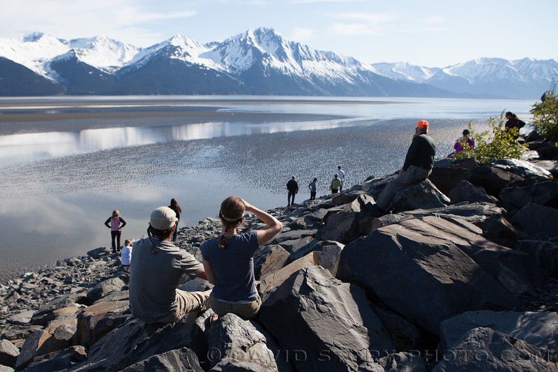 Lining the shore, spectators wait to watch the bore tide of Turnagain Arm pass between them and the Kenai Peninsula.