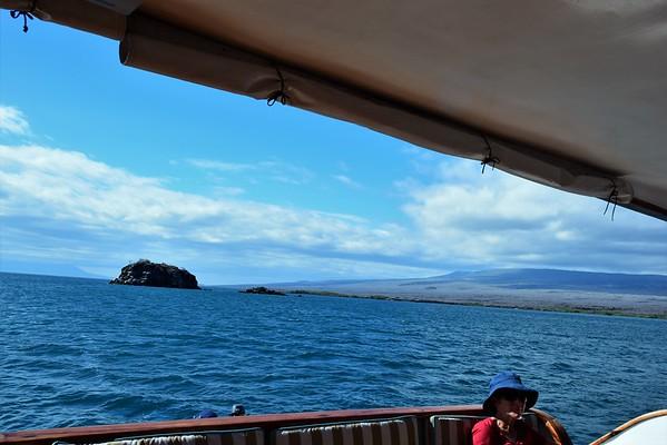 Galapagos Day 7 - Elizabeth Bay