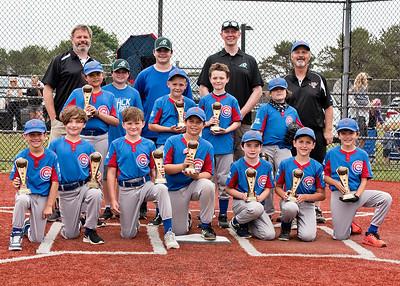 Cubs Championship