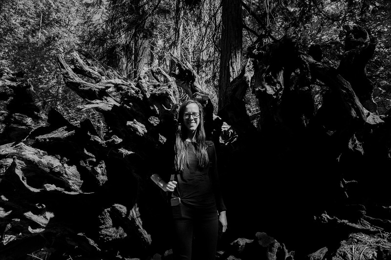 Forest_City_Photographs_Honeymoon_Califonia_San_francisco_Yosimite-190.jpg
