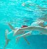 Vintage Swim-Remender