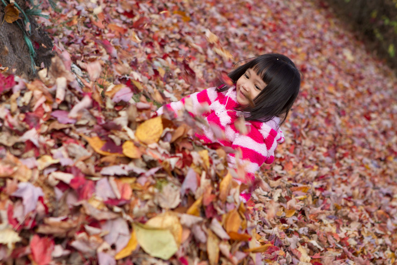 Autumn-Cleaning-2013-15.jpg