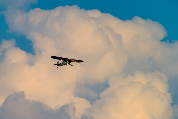 OY-BSS - Piper PA-11 Cub Special