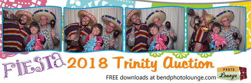 2018 Trinity Auction