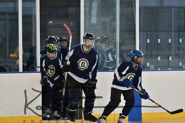 14U Hockey State Tournament FRIDAY