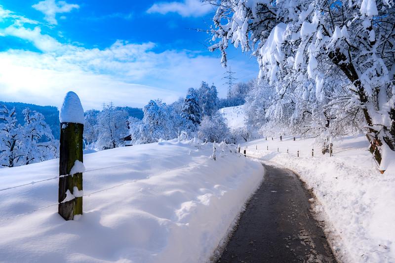 Winterthur-Winter-04347.jpg
