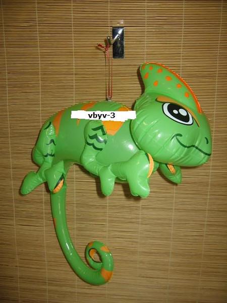 IF- ANIMAL- Rain Lizard 3.jpg
