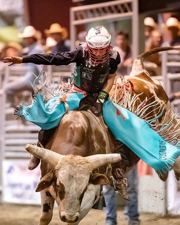 2019 Norco Fair Bull Riding