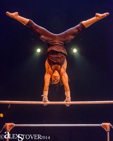 Cirque du Soliel- Ama Luna- San Jose 2014