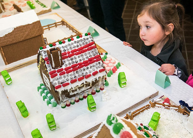 20161125 - Gingerbread House Walk (SN)