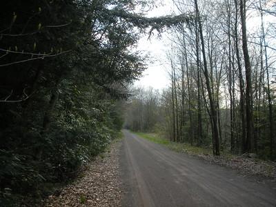 Gap Markleton May 8