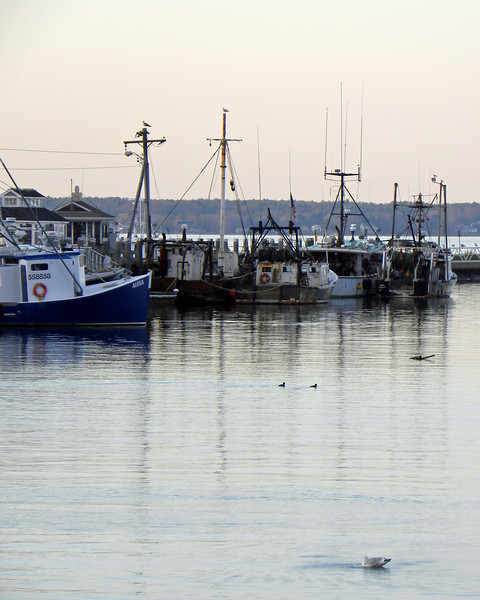 plymouth harbor2.jpg