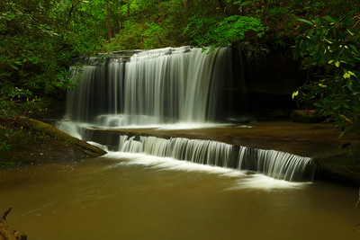 Rachael Creek w Wendy