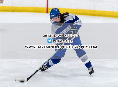 3/6/2018 - Girls Varsity Hockey - Braintree vs Woburn