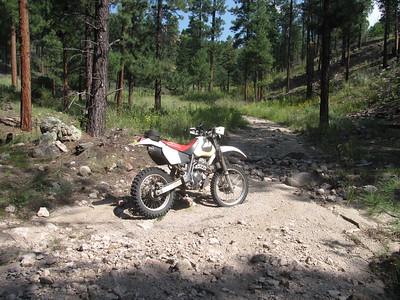 Jemez Mtns. - Canovas Can.-Peak 8,980-San Juan Can.-Cerro Pelado Trailride  8-24-15