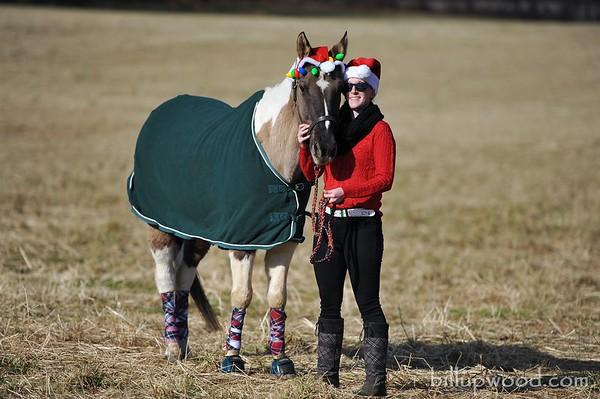 Toby Christmas Photos - 12/23/2018