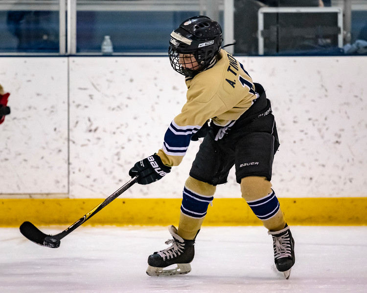 2018-2019_Navy_Ice_Hockey_Squirt_White_Team-100.jpg