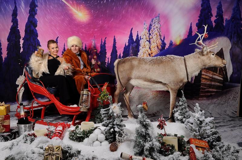 phototheatre reindeer christmas 4.jpg