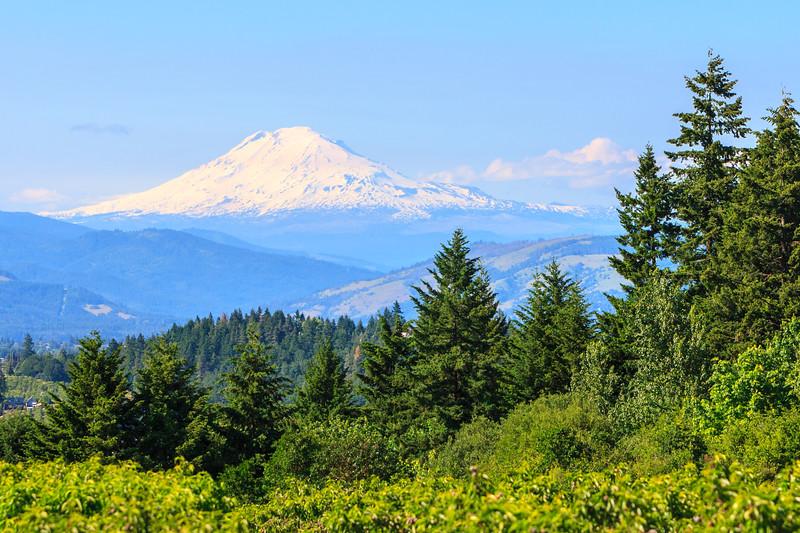 Mt. Adam