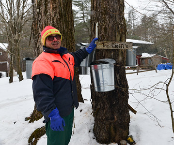 2015 Maple Syrup Harvest/NH