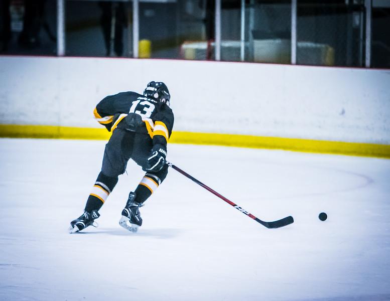 Bruins2-545.jpg