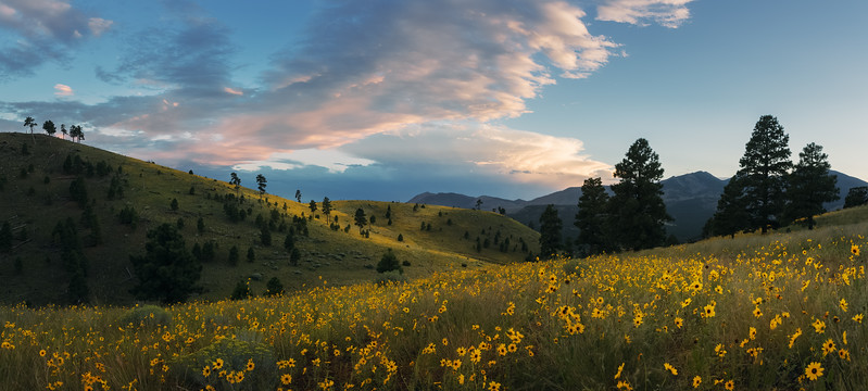 Arizona_landscape_Photographer-5.jpg