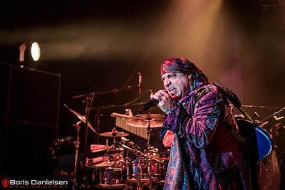 Little Steven And The Disciples Of Soul.