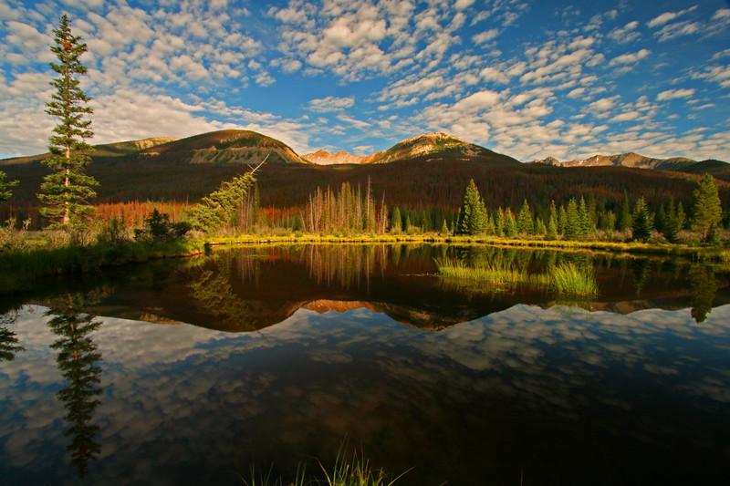 Beaver Ponds - Rocky Mountain National Park