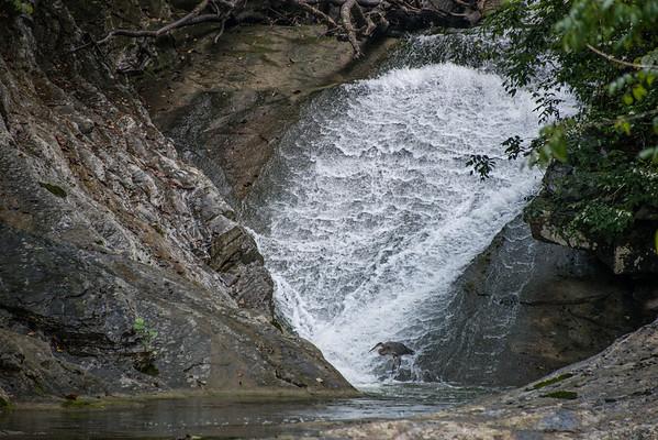 Lace Waterfalls, VA