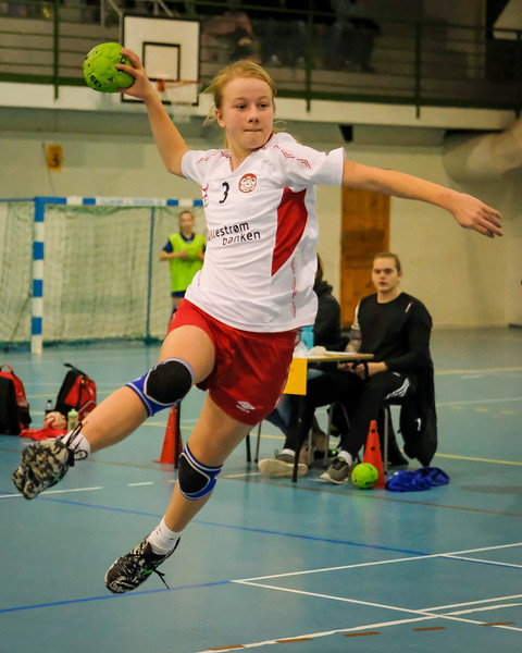 Flyball cup i Aurskoghallen, januar 2017.