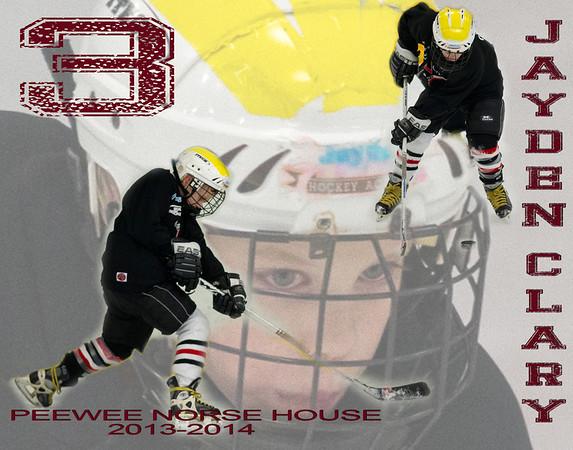 Pee Wee Norse Hockey 2013