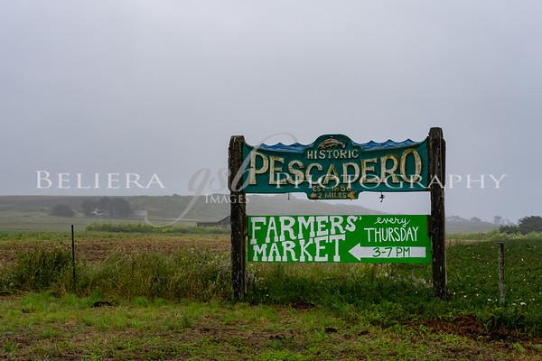 2017 Pescadero Road Race