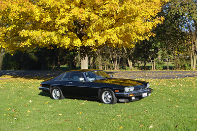 84 Jaguar XJS - black