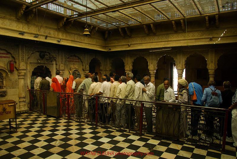 INDIA2010-0206A-107A.jpg