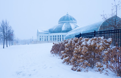 Snowy Conservatory (color)
