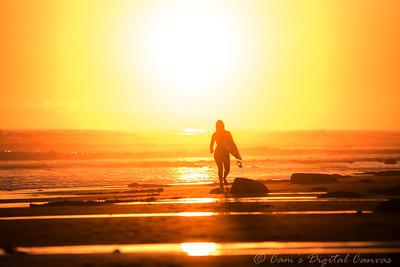 1-26-2020 Surfer's Point Ventura