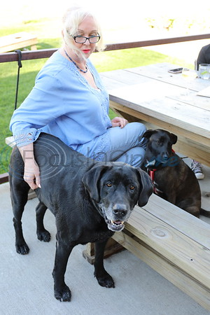 4/18/19 Pooches On The Patio by David Thomas