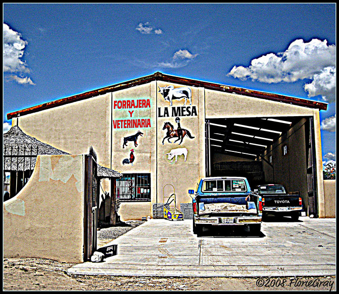 Animal Hospital, Baja California Sur    Please don't use this image on websites, blogs or other media without my explicit permission. © All rights reserved
