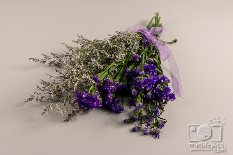 20180525 Purple ColorStoryCollab (21).jpg