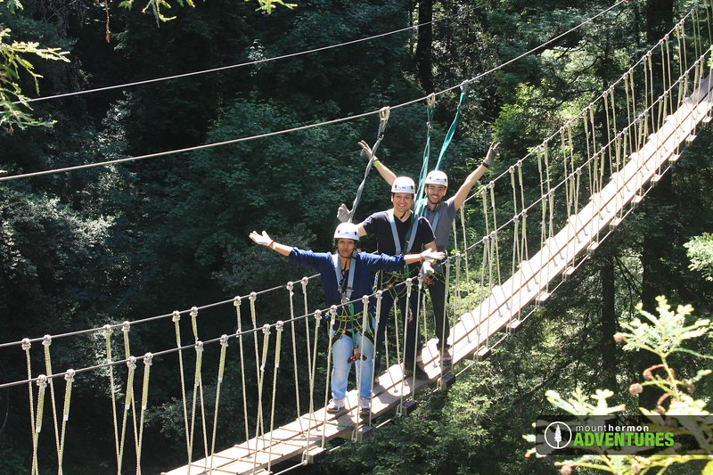 redwood_bridge_1528411452976.jpg