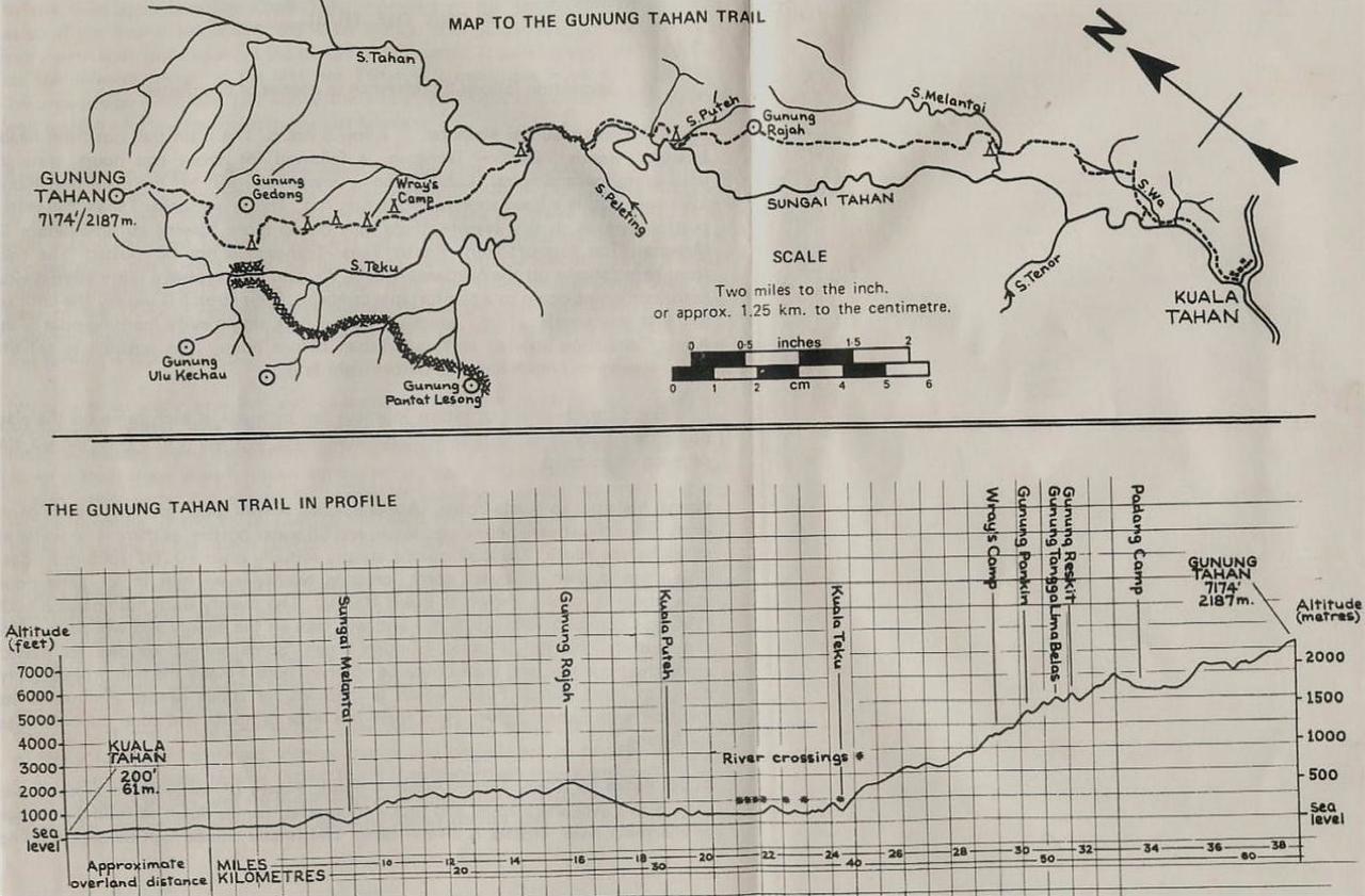 Gunung Tahan mountain trek hike route map