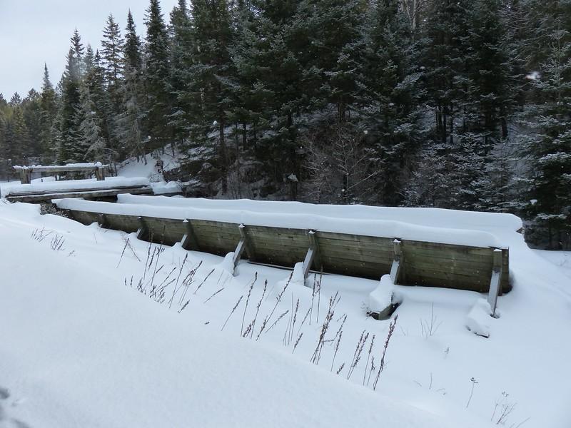 Logging Museum Trail exhibit