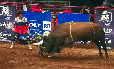 Heart of  Texas Rodeo 2019