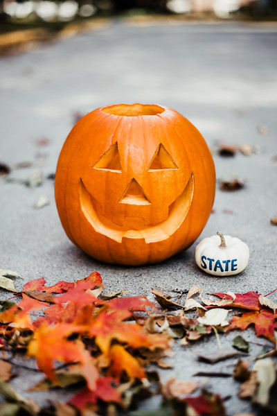 October 25, 2018 Halloween DSC_5728.jpg