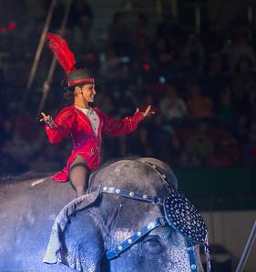 Shriner's Circus 11-17-15