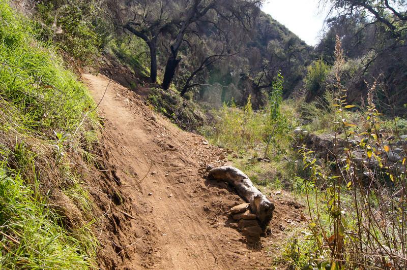201201291598-El Prieto Trailwork.jpg