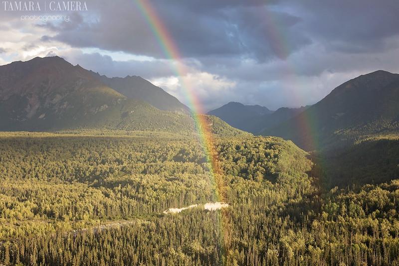 Rainbows3-2-2.jpg
