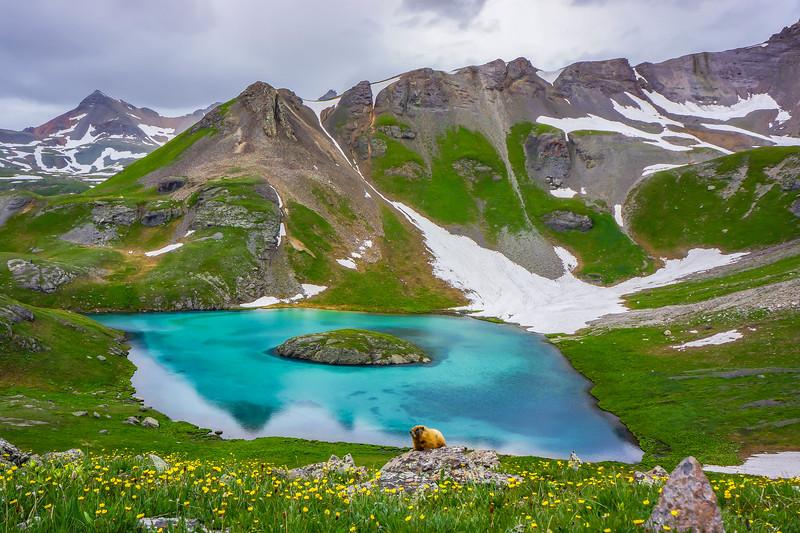 Island_Lake_Marmot_Hank_Blum_Photography.jpg