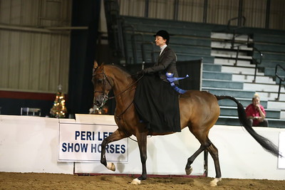 58 605 HA/AA Ladies Sidesaddle