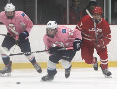 Wilmington Melrose hockey 020219